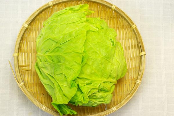 【無肥料・自然栽培】キャベツ 柔らかく甘みがあります[鳥取県:西川真]【v800】※11月23日(月)入荷分