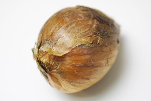 【無肥料・自然栽培】玉ねぎ5kg[熊本県:浅野保さん]【v5000】