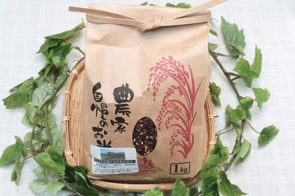 【無肥料・自然栽培】黒米(古代米)1kg 白米に混ぜて宅だけで赤飯のようなモチモチのご飯ができます[和歌山県:かたやま農園]【v1000】