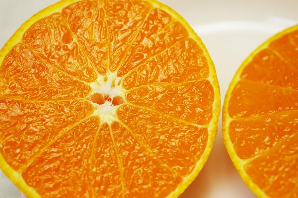 【無肥料・自然栽培】不知火(デコポン)5kg 芳醇な薫りと濃厚な甘みと酸味の柑橘[熊本県:海乃蛙自然農園]【v5000】