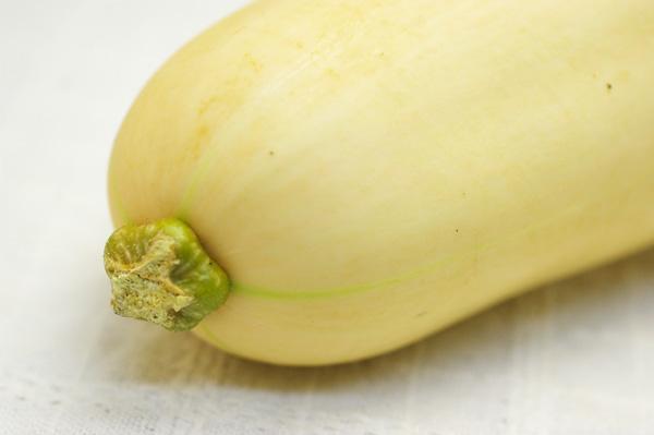 【無肥料・自然栽培】バターナッツカボチャ ナッツのような風味とバターのようなねっとりした果肉[京都府:中嶋大輔]【v1000】