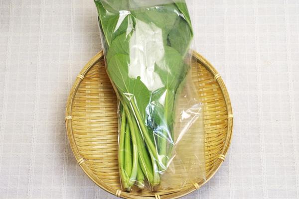 【無肥料・自然栽培】小松菜[長野県:水輪ナチュラルファーム]【v400】