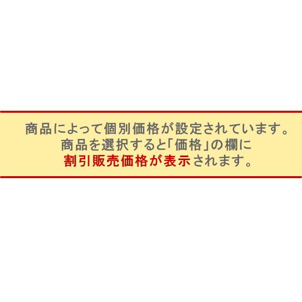 [わけあり品]OSUNA製入門用フラメンコシューズ 皮ベルト Piel (表皮) 釘あり [フラメンコ用][スペイン直輸入]