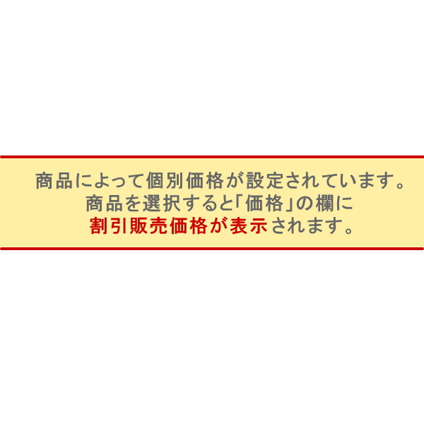 [わけあり品] OSUNA製プロフェッショナル用フラメンコシューズ Piel (表皮) 皮ベルト 釘あり 黒 [フラメンコ用] [スペイン直輸入]