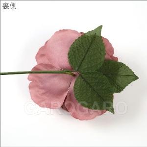 バラ Apolonia (アポロニア) (レッド系) [フラメンコ用] [スペイン直輸入]