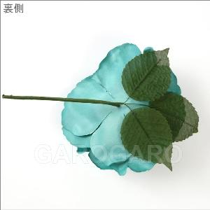バラ Apolonia (アポロニア) (グリーン系) [フラメンコ用] [スペイン直輸入]