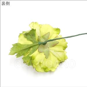 【発表会におすすめ】グリーンのラナンキュラス [中輪] [フラメンコ用]