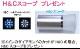 【永遠 Towa】【スーパーハードプラチナ】【H&Cダイア】高品質結婚指輪  変形やキズに非常に強い  緩やかなV字デザインのハーフエタニティリングMpTRM243hc-002-SH