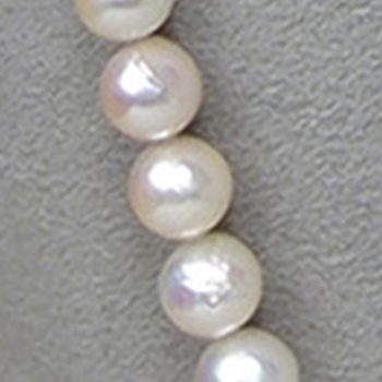 パールロングネックレス(アコヤ真珠)8.0〜8.5mm、91cm