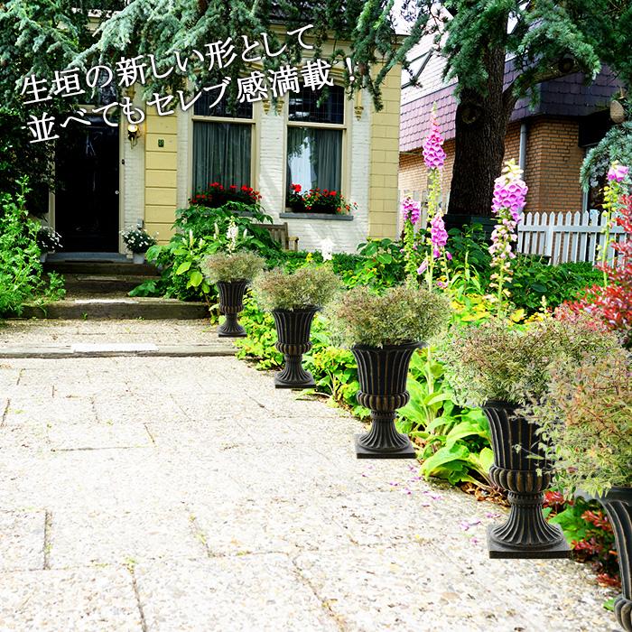 【ご注文から1週間ほどで出荷】置くだけ簡単な生垣 アベリア コンフェッティー 斑入り 7号 素敵な鉢で。 暑さに強い 寒さに強い 鉢植え 毎年咲く 植木