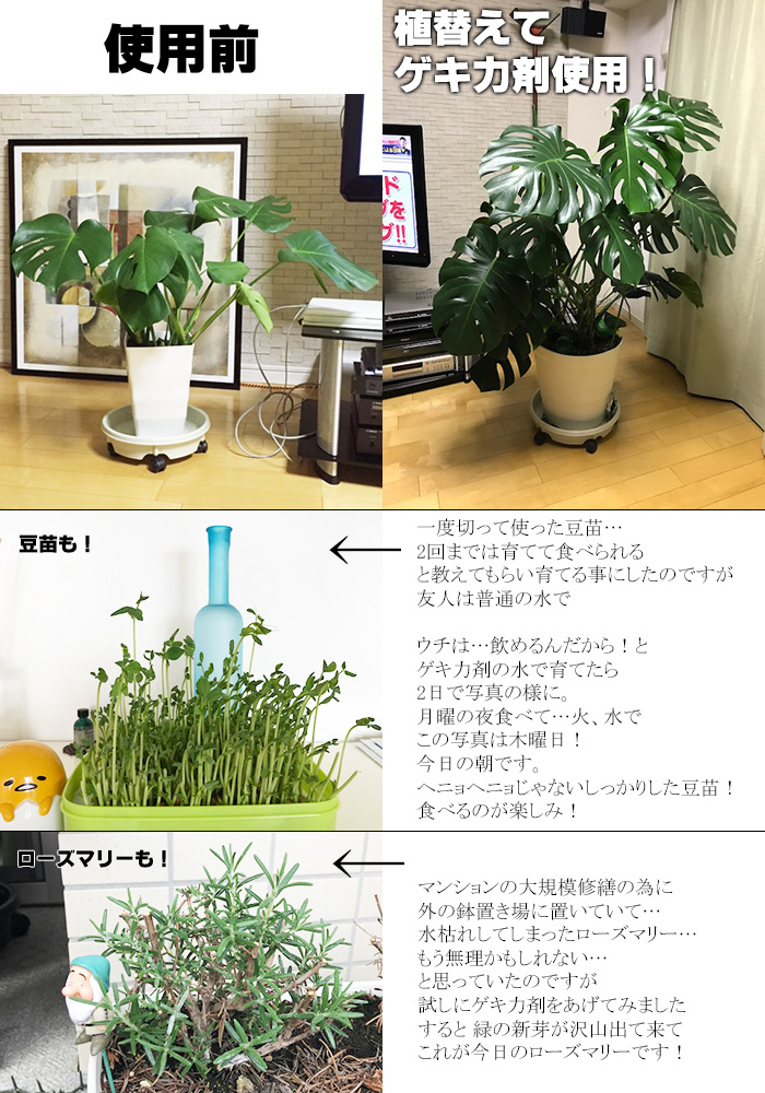 【お得な3本セット】濃縮ゲキ力剤EX 植物のパフォーマンスを引き出す活力剤【メール便送料無料・時間指定・日付指定不可】