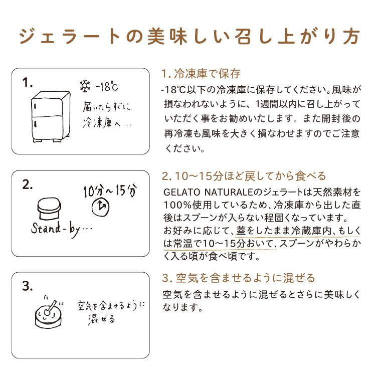 オーガニックジェラート+スプーン2個セット 5個 GELATO NATURALE GIFTBOX5 おまかせ5種