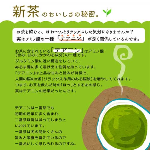 【新茶】静岡産 深蒸し茶 葵富士 Aoi Fuji