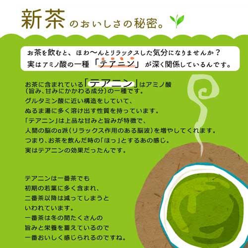 【新茶】静岡・牧之原産 深蒸し茶 茜富士 Akane Fuji【送料無料!まとめ割3本セット】[M便 1/4]
