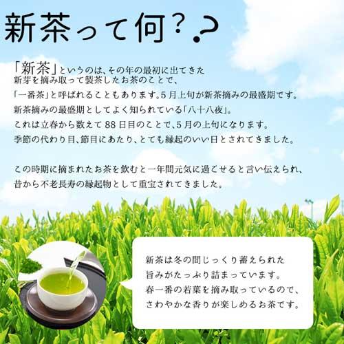 【新茶】静岡産深蒸し茶 郷の葉