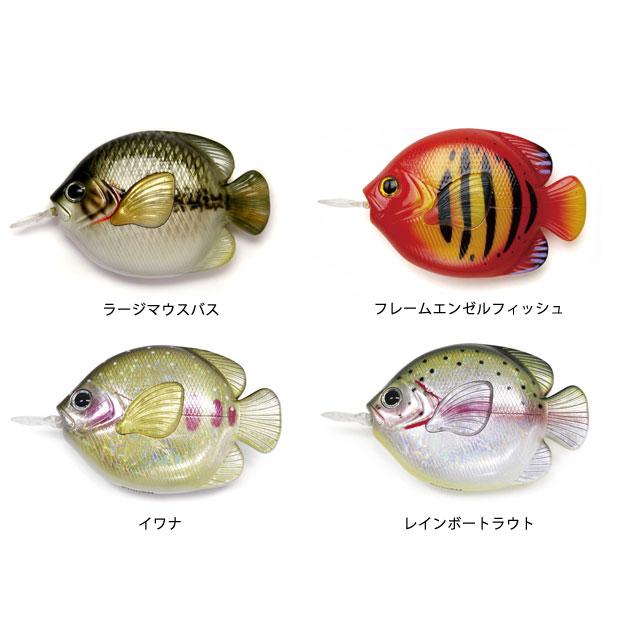 FISH MEASURE