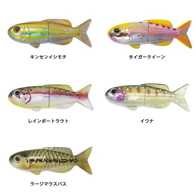FISH MAGNET