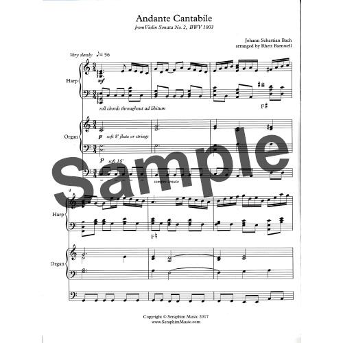 【半期決算10倍P】ヴァイオリンソナタNo.2より Andante Cantabile/J.Sバッハ