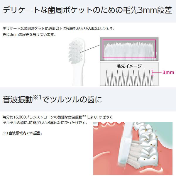 EW-DS1C-A パナソニック 音波振動ハブラシ ポケットドルツ 青