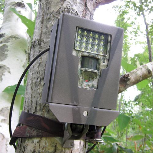 【販売終了】不法投棄監視カメラ TS550 (後継モデルはTS550sです)