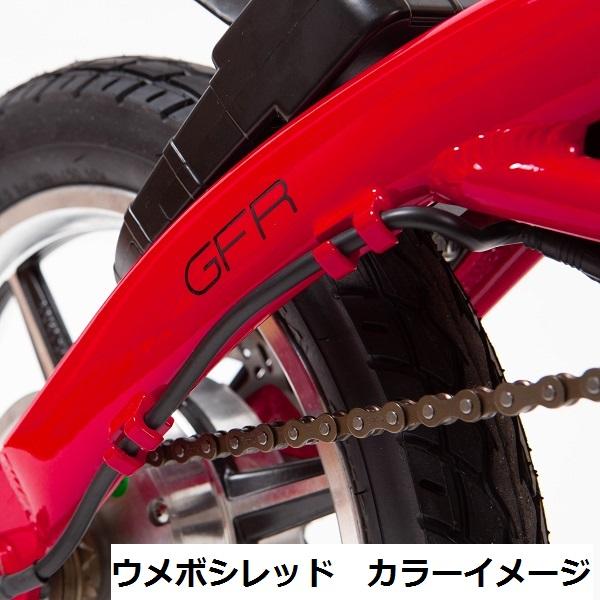 GFR-01 ウメボシレッド【スタートアップキット】
