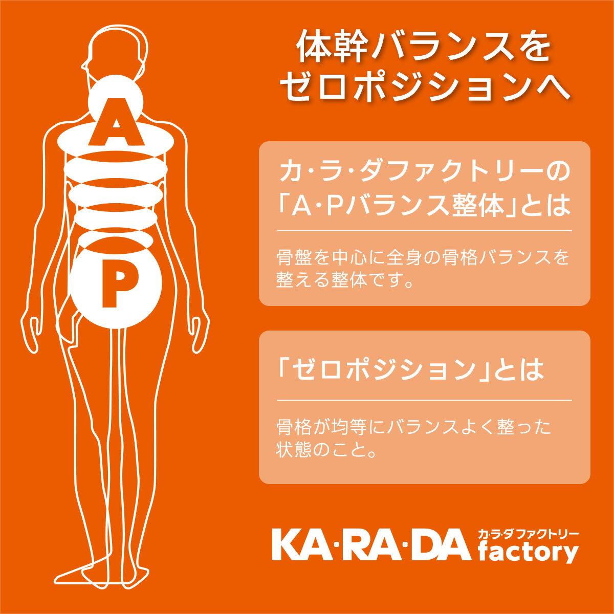 KARADAファクトリー(カラダファクトリー) 背筋スッキリ! 体幹安定ですっきりした立ち姿に 体幹調整ベルト レディース 女性 婦人 3171-001 【ゆうパケット・お取り扱い不可】
