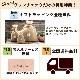 【10%OFF】[FLYING HORSE/フライングホース]ホースレザー(馬革)ブリーフケース×日本製コードバン使用のカードケースセット グレンフィールド【名入れ無料】[あす着対応]
