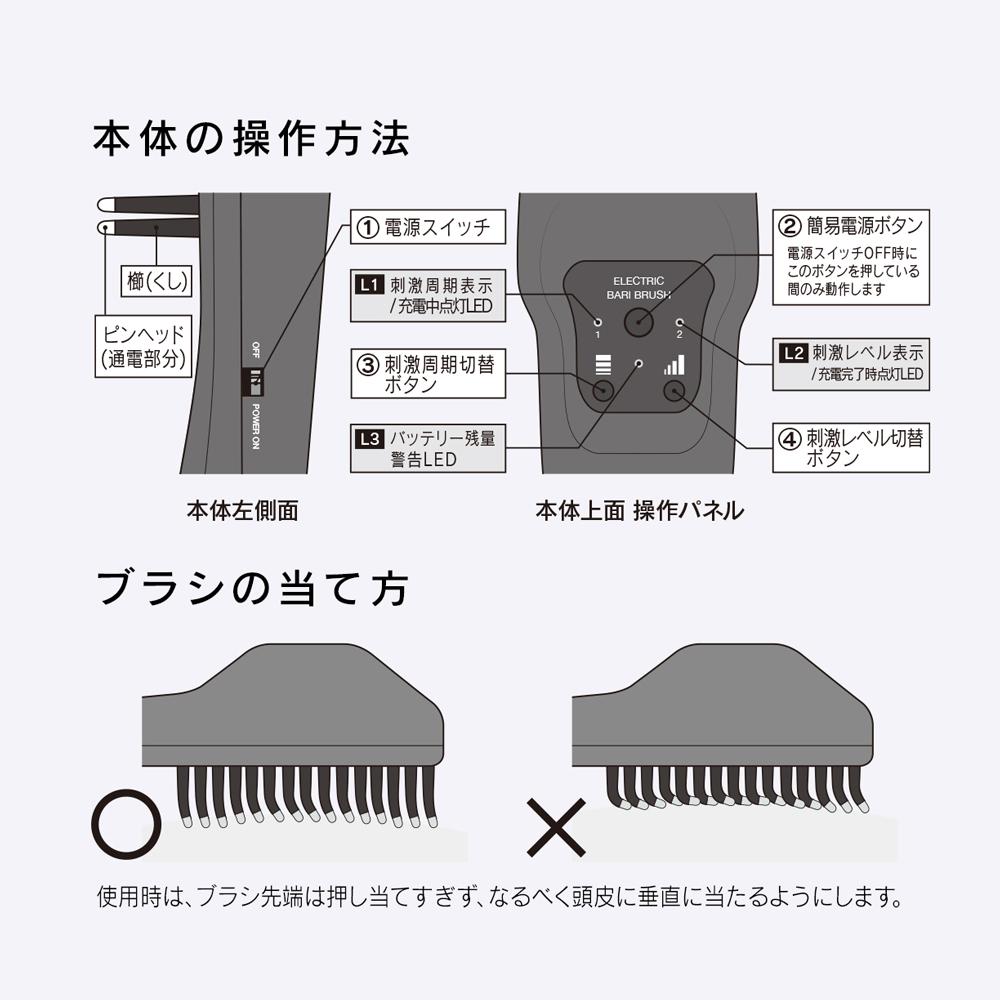 【期間限定】デンキバリブラシ(R)+EXスキンローション100mlセット