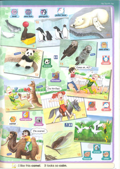 AJ's PICTURE DICTIONARY