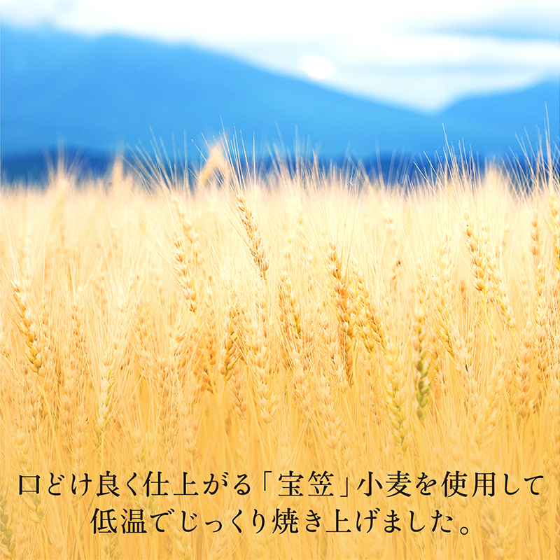 ラ・メゾン コレクション S :サマー【送料込み】 【他商品との同梱不可】
