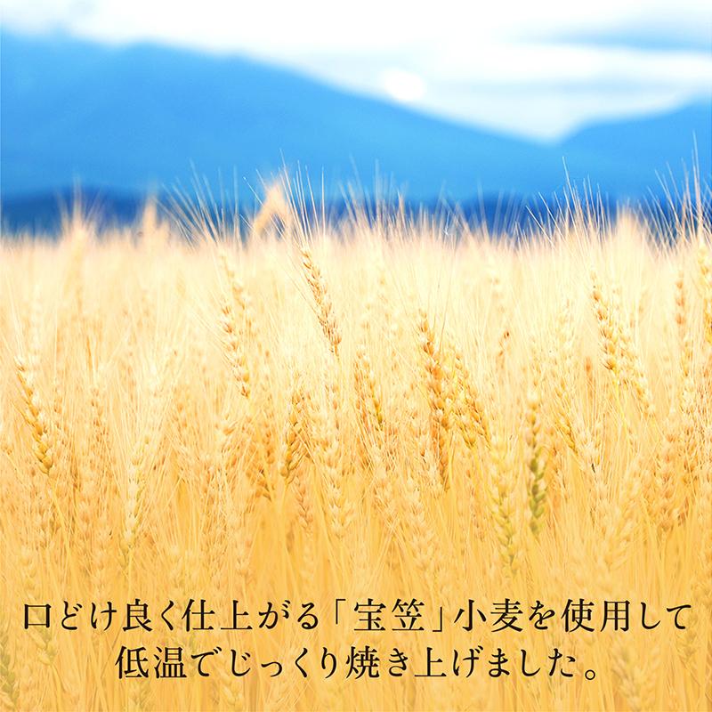 しっとりマドレーヌココン 6個入 【2021秋冬】