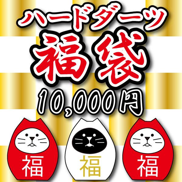 ★2021年福袋★ ハードダーツ10,000円 (定価総額27,000円以上の商品が入っています)