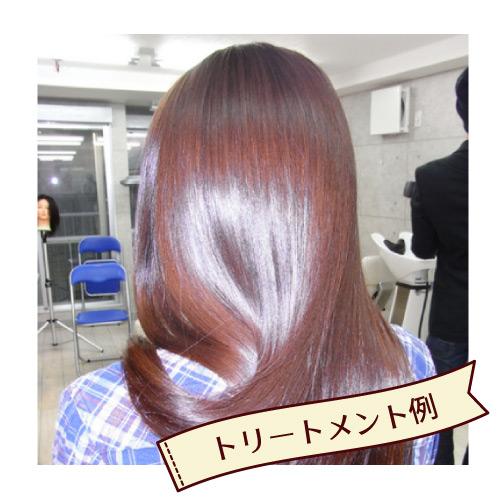 ヘナ初心者セット オレンジブラウン (トリートメント・白髪なし又はまばら用)/ベーシックタイプ