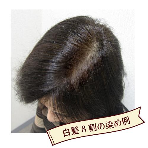 ヘナ初心者セット ナチュラルブラウン (黒茶染め・白髪が半分以上用)/ベーシックヘナ