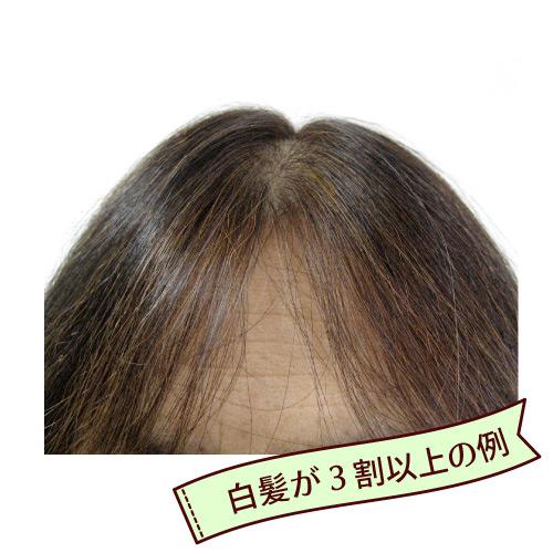スーパーブラウン ヘナ初心者セット/早染めタイプ