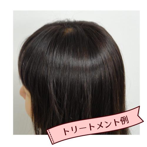 ヘナ初心者セット ビターオレンジ (トリートメント・白髪なし又はまばら用)/オーガニック認証タイプ