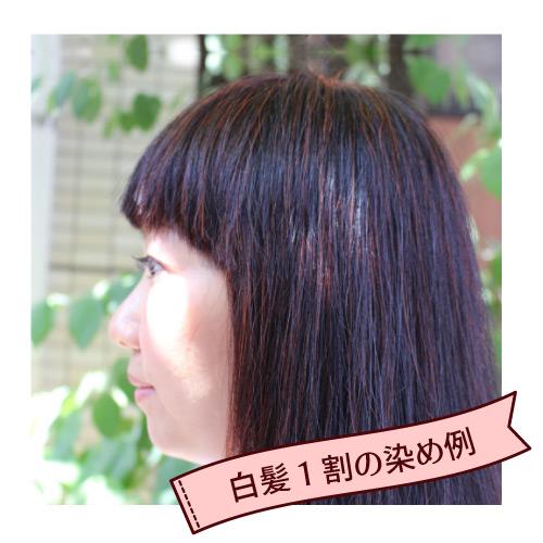 頭皮と髪を癒すヘナ100% ビターオレンジ グリーンノートヘナ オーガニータ