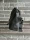 【SML】MESSENGER BAG S