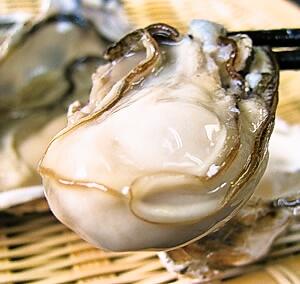 【期間限定】 牡蠣釜めし