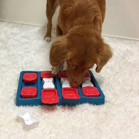 ニーナオットソン Dog Brick new Level2