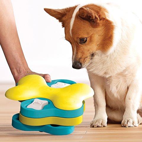 ニーナオットソン Dog Tornade new Level2