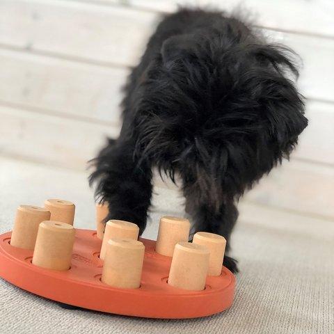 ニーナオットソン DOG SMART  COMPOSITE - NEW COLOR Level1