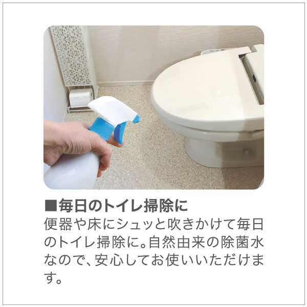 天然除菌水 プロテクティブウォーター PW×10