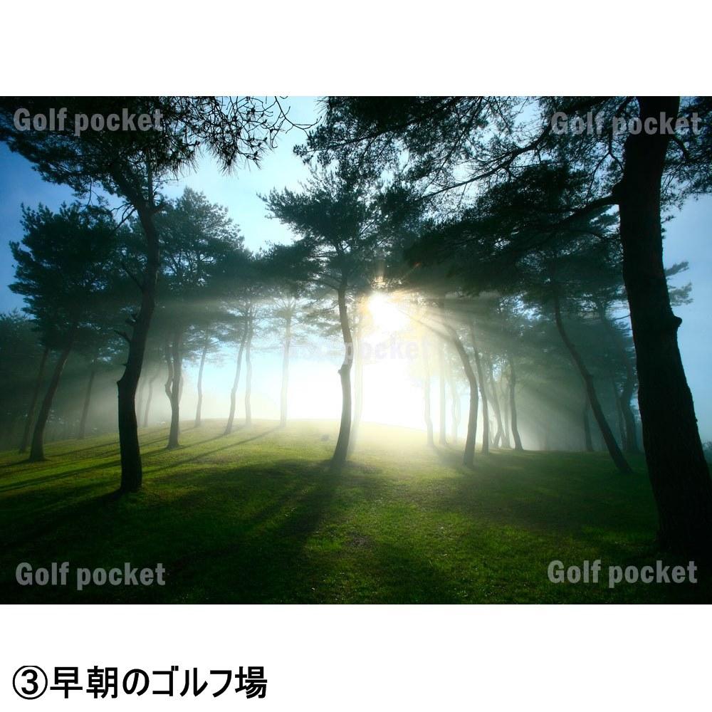 【カンタンお洒落に模様替え】フレーム入りゴルフフォト