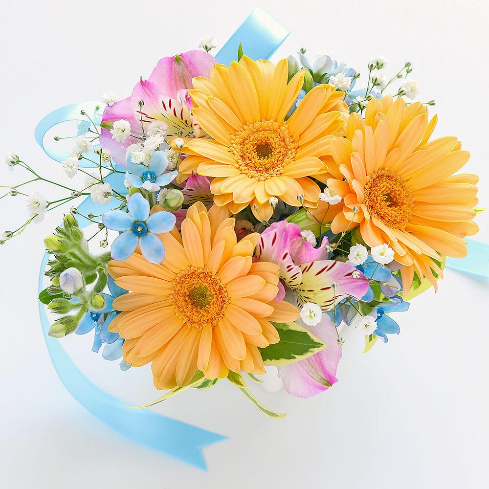 旬のお花の定期便 7日コース【ベーシック】