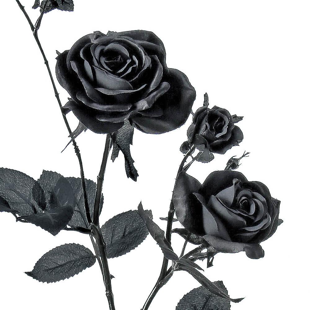 ハミルトンローズ×3 ブラック A-39603【造花】