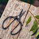 ベアボーンズ リビング ガーデン シザーズ S ウォールナット 園芸用はさみ  国内正規品