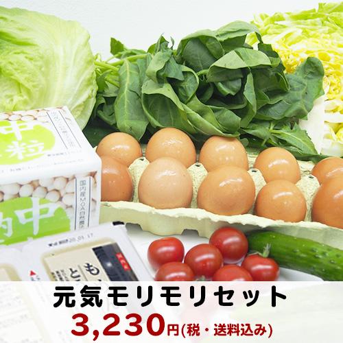 【予約】【東北・関東のお客様限定】季節の新鮮野菜セット ≪送料込み≫