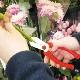 【メーカー直送】ガーデンばさみ・花はさみ ≪送料別≫