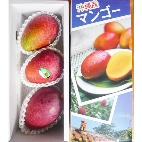 【産地直送】沖縄県産 マンゴー(アーウィン)秀品 約1kg ≪送料込み≫